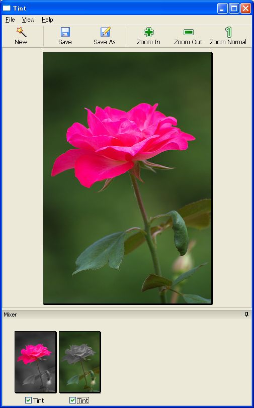 tintphotoed01.jpg